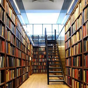 Библиотеки Ботлиха